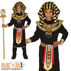Ancient Egyptian Boys Fancy Dress Egypt King Pharaoh Kids Historical Costume New
