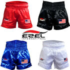 Kick Boxing MMA Shorts UFC Fight Fighter Grappling Muay Thai Short Cage