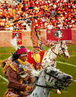 Chief Osceola Florida State Seminoles Renegade FSU Football Art 1 8x10-48x36