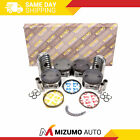 Full Gasket Set Pistons Bearings Fit 05-12 Nissan Frontier Suzuki Equator 2.5L