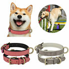 Adjustable Leather Dog Collar Metal Buckle Soft Padded Puppy Small/Medium/Large