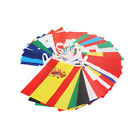 EURO 2020 2021 Bunting 10M Polyester Country International Flags Decoration US