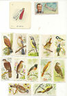 CIGARETTE CARDS CARRERAS..FOOTBALLERS AND BIRDS.