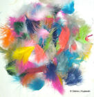 "Marabou Feathers Fluffy 7 grams 1-3""  29 colors available Approx 105 per bag фото"