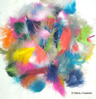 """Marabou Feathers Fluffy 7 grams 1-3""""  29 colors available Approx 105 per bag"""