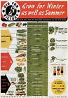 WB8 Vintage WW2 Dig For Victory Grow Vegetables British WWII War Poster A4