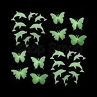 Glow in Dark 4 x 3D Butterflies or 8 x Dolphins + Adhesive – Bedroom/Nursery