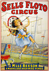 TZ67 Vintage Sells Floto High Wire Venus Circus Carnival Poster Re-Print A4