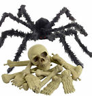 "HALLOWEEN FANCY DRESS PARTY PROP 40"" LEG SPAN GIANT SPIDER OR SKELETON BONES"