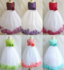 Red Burgundy Wine Purple Lapis Coral Pool Fuchsia Rose petals flower girl dress