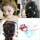 New Bridal Jewelry Flower Wedding Hair Accessories Multicolor