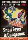 WB39 Vintage WW2 Snail Fever Is Dangerous Dirty Water WWII War Poster A3/A4