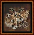 COUGARS -  14 COUNT CROSS STITCH CHART (DMC THREADS) FREE PP WORLDWIDE
