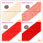 "Pretty 3x5mm Column Coral GEM Jewelry Making Beads 15""  SD3433-V  Seed_Beauty"