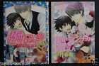 JAPAN manga: Junjo Romantica / Pure Romance 19 Limited Edition W/Illustrations