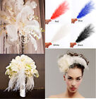 20pcs Ostrich  Feathers Trim Sewing Trimming Costume Millinery Craft 15-40CM