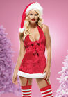 Sexy Santa Missy Claus Christmas Dress with Stockings Intimate Adult Costume