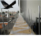 2/4/6/8/10M ANTI PERCH BIRD PIGEON SEAGULL INTRUDER DEFENDER FENCE WALL SPIKES