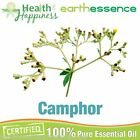 earthessence CAMPHOR ~ CERTIFIED 100% PURE ESSENTIAL OIL ~ Aromatherapy Grade