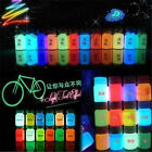 8Color Glow in the Dark Acrylic Luminous Paint Bright Pigment Graffiti Party 20g