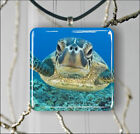 TURTLE SEA LIFE CLOSE UP #2 PENDANT NECKLACE OR EARRINGS -try6Z