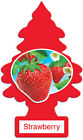 Little Trees Hanging Air Freshener Choose Scent Car Truck RV Home Office 6-10-24