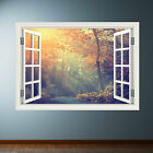 Jungle Walk Window Frame Full Colour wall sticker decal transfer mural WSD250