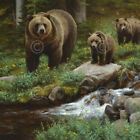 The New Mother by Kyle Sims Art Print Poster - Bear Wildlife Country Lodge Decor