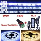 5/10/20M 3528 5050 5630 SMD Cool/Warm White LED Flexible Strip Light Adapter DC