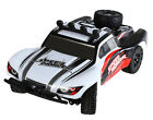 1/18 4WD High Speed Radio Remote control RC Racing Buggy Car Off Road NEW (UK)