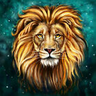 Home Art wall decoration Lion Animal oil painting picture Printed on Canvas HN28
