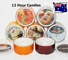KRINGLE CANDLE SCENTED Daylight Candle 12 Hour LARGE Tealights $8 Post for 50+
