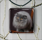 CAT PERSIAN BLACK BREED PENDANT NECKLACE 3 SIZES CHOICE -hkt6Z