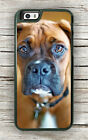 DOG BOXER HEAD #2 CASE FOR iPHONE 7 OR 7 PLUS -lkx8Z