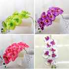 Beautiful Phalaenopsis Butterfly Orchid Silk Flower Bouquet Home Wedding Decor