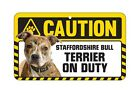 Dog Sign Caution Beware - Staffordshire Bull Terrier - Staffy