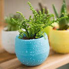 Colorful Mini Round Plastic Plant Flower Pot Garden Window Boxes Office Planter