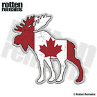 Moose Decal Canada Flag Canadian Hunting Bow Hunter Vinyl Sticker (LH) M55