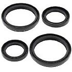 Rear Differential Seals Kit Arctic Cat 500 XT 2013