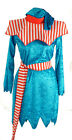 BLUE CHRISTMAS ELF Santa's Helper Fancy Dress Costume All Sizes/Plus Sizes