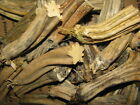 "24 Dried Pumpkin Stems Flat Base YOUR CHOICE Lots 4-5"" Ships Free US"