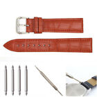 Red Genuine Leather Watch Bands Belt + Loading Strap Tool + Spring Bar 18-22mm