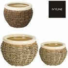Ivyline Seagrass Wicker Design Indoor Home Planter Plant Pot in Various Sizes