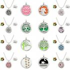 316L Stainless Steel Aromatherapy Essential Oil Diffuser Perfume Locket Necklace on eBay