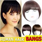 Women Bangs Human Hair Extensions Clip in Front Piece Pony F