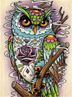 Creative Animal Owl DIY Paint By Numbers Kit Canvas Oil Painting Home Wall Decor