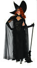Elegant Wicked Witch Womens Adult Gothic Halloween Costume