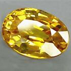 Natural Gem  Oval Shape Yellow Sapphire Size 10 X 14 Mm. From Thailand Ev