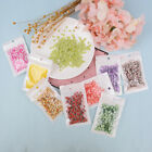 10g Fruit slice clay sprinkles for filler supplies fruit mud decoration for kids image