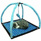 Pet ting Cat Campsite Bed (Blue or Red)  size 53x53x38cm
